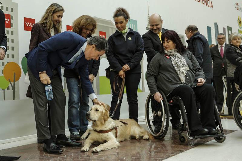 La Comunidad de Madrid permite entrar a todos los espacios públicos a los perros de asistencia