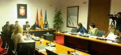CERMIN protagoniza la apertura de la Comisión de Discapacidad del Parlamento de Navarra