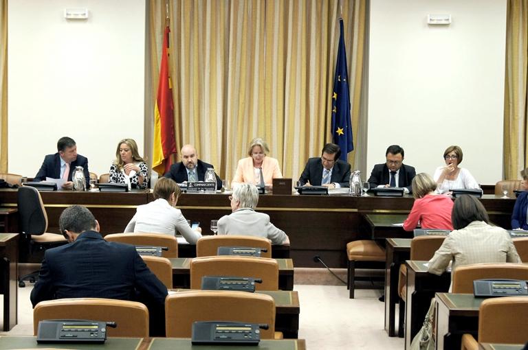 Imagen durante la celebración de una Comisión de Discapacidad en el Congreso