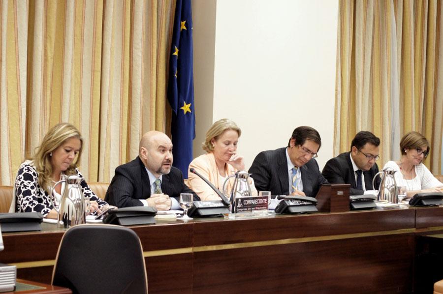 Luis Cayo Pérez Bueno, presidente del CERMI durante su intervención en la Comisión de Discapacidad