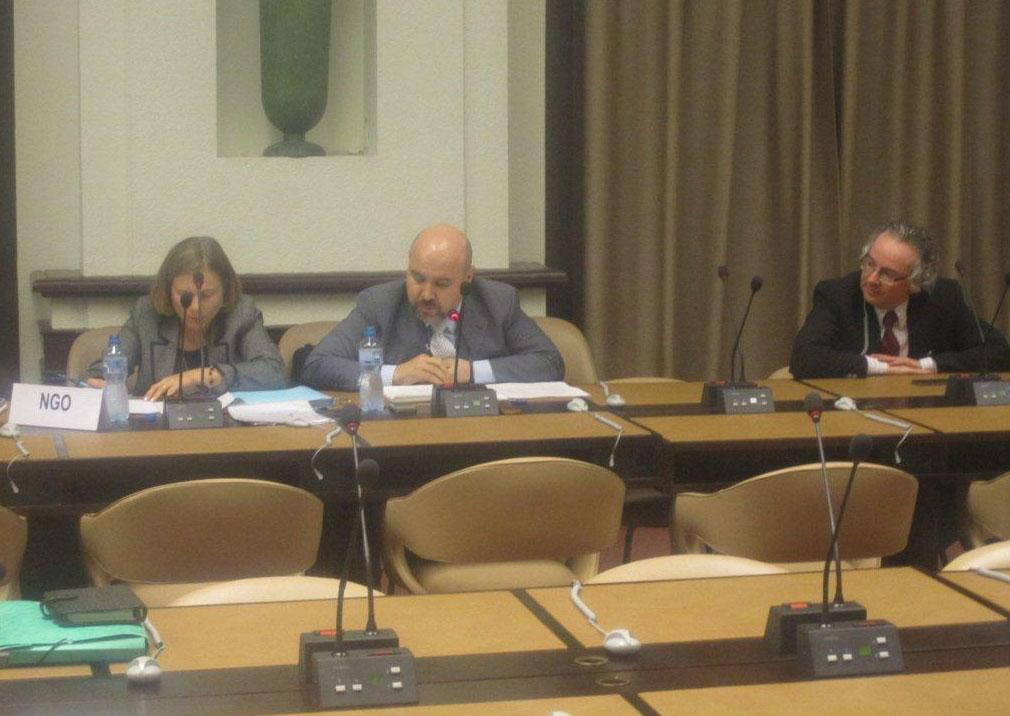 Un momento de la exposición del CERMI en Ginebra