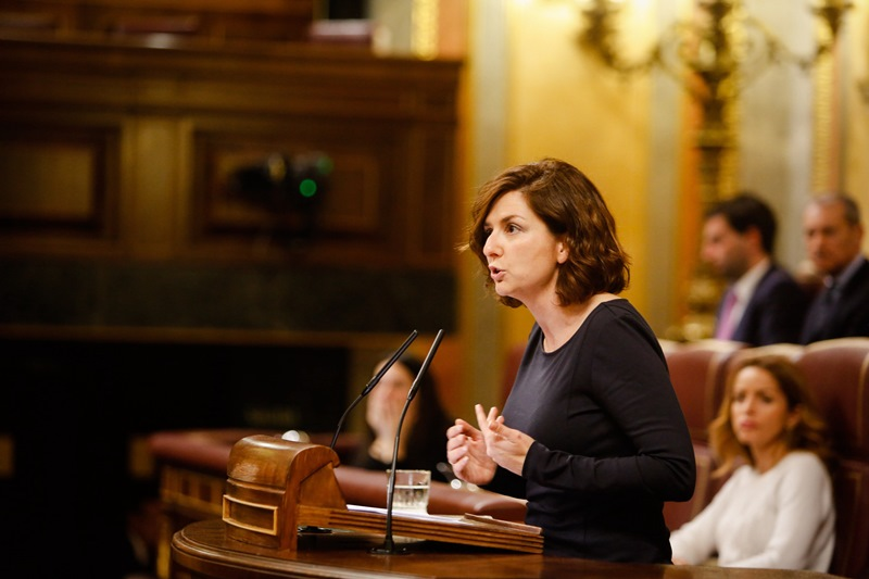 Orlena de Miguel, portavoz en la Comisión de Políticas Integrales de la Discapacidad del Grupo Parlamentario de Ciudadanos