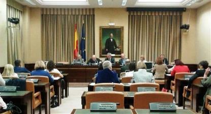 Comparecencia del CERMI ante la Comisión de Servicios Sociales del Congreso para la defensa de la ILP contra el copago del CERMI