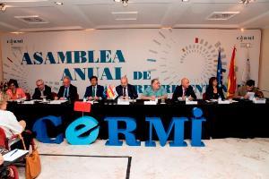 Asamblea del CERMI