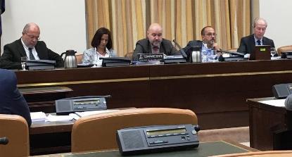 El presidente del CERMI, Luis Cayo Pérez Bueno, en su comparecencia antes la Comisión de Discapacidad del Congreso de los Diputados