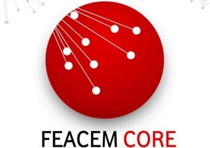 Feacem Core