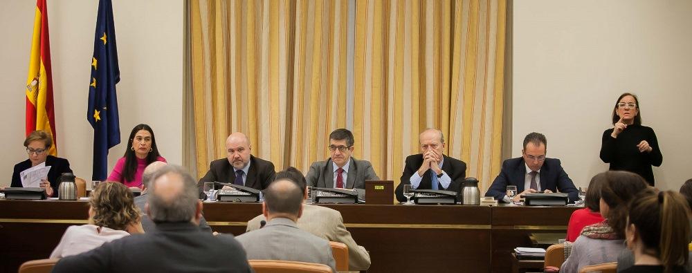 Comparecencia del CERMI ante la Comisión de Sanidad y Servicios Sociales para defender la ILP
