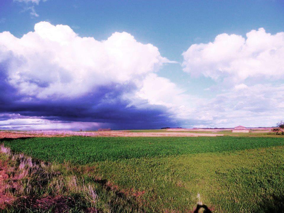 Imagen del campo, un entorno rural