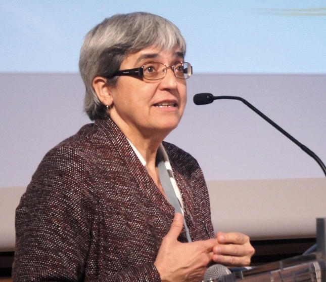 Fefa Álvarez, asesora de Accesibilidad Universal del CERMI