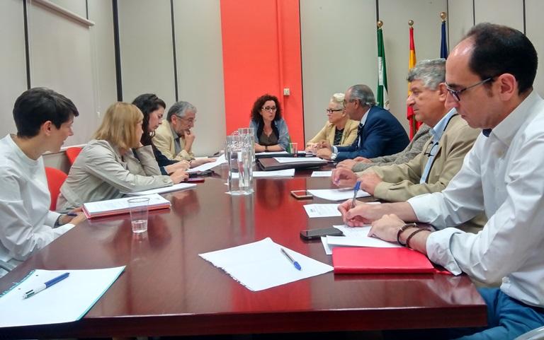CERMI Andalucía se reúne con la viceconsejera de Salud de la Junta para tratar diversos asuntos relacionados con la atención temprana