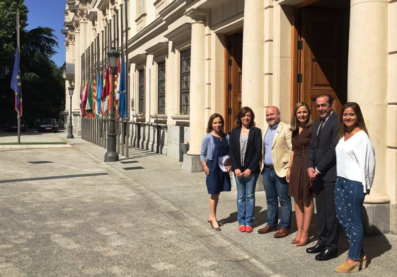 El CERMI repasa con el Grupo Popular del Senado la agenda legislativa de la discapacidad