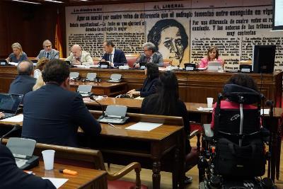 """El presidente del CERMI, Luis Cayo Pérez Bueno, urge en el Senado a acabar con la """"exclusión sistemática y estructural de las personas con discapacidad"""""""