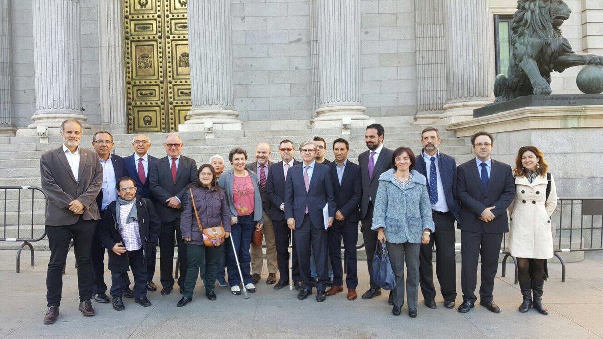 Representantes del CERMI y de entidades de la discapacidad posando ante el Congreso de los Diputados