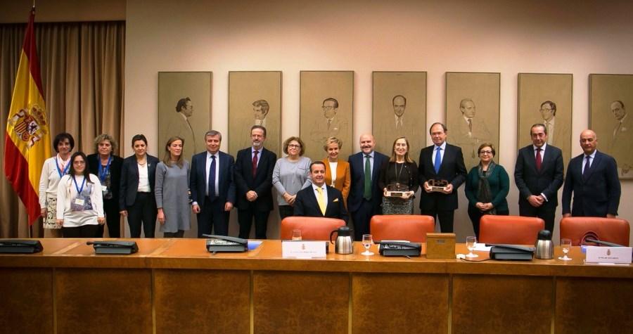 El CERMI premia en su 20º aniversario al Congreso y al Senado por su impulso a los derechos humanos de las personas con discapacidad