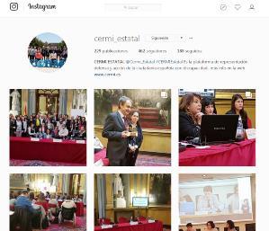 Imagen de la cuenta de Instagram del CERMI