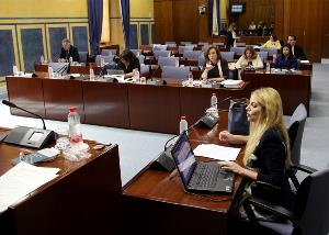 Un instante durante la comisión de Justicia e Interior del Parlamento andaluz que tramita el proyecto de reforma de la Ley de Medidas de Prevención y Protección Integral contra la Violencia de Género