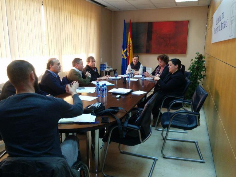 CERMI Asturias aborda la regulación del Asistente personal en el Principado de Asturias