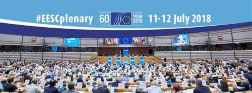 """El Comité Económico y Social Europeo anuncia el pleno en el que se aprueba el dictamen sobre """"La situación de las mujeres con discapacidad"""""""