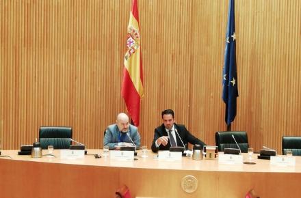 El presidente del CERMI, durante su intervención en el Congreso.