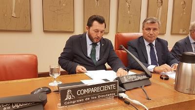 Fran Sardón, presidente de Predif