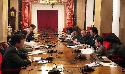 El Congreso de los Diputados acoge la reunión del Comité de Apoyo del CERMI para la Convención Internacional sobre los de Derechos de las Personas con Discapacidad