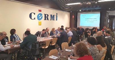 Imagen del CERMI durante la reunión de su Comité Ejecutivo