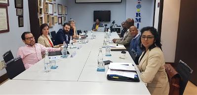El CERMI expone el modelo español al movimiento de la discapacidad de Sudáfrica para avanzar hacia la igualdad de derechos