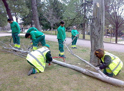 Personas con trastorno mental realizando labores en zonas verdes