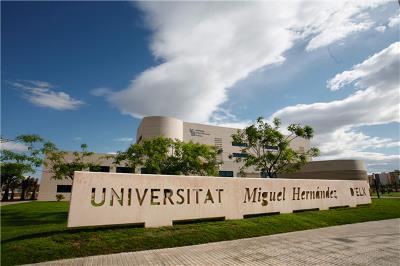 Imagen de la Universidad Miguel Hernández