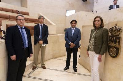 CERMI Cantabria comparece en el Parlamento de Cantabria ante la comisión especial no permanente para el estudio y seguimiento de la situación derivada de la crisis del COVID-19