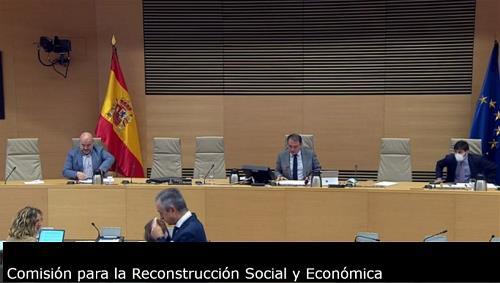 Imagen que da paso a la Grabación audiovisual accesible de la comparecencia del presidente del CERMI ante la Comisión para la Reconstrucción Social y Económica