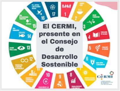 El CERMI, presente en el Consejo de Desarrollo Sostenible