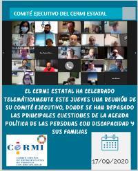 Comité ejecutivo del CERMI