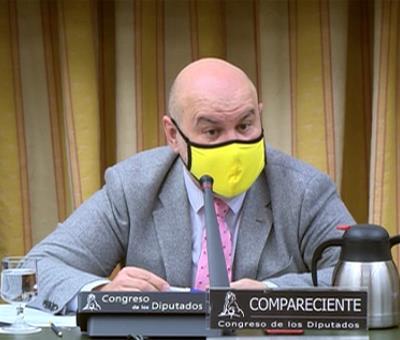 Luis Cayo Pérez Bueno, durante su comparecencia en la Comisión de Justicia de la Cámara Baja
