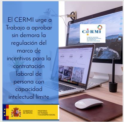 El CERMI urge a Trabajo a aprobar sin demora la regulación del marco de incentivos para la contratación laboral de persona con capacidad intelectual límite