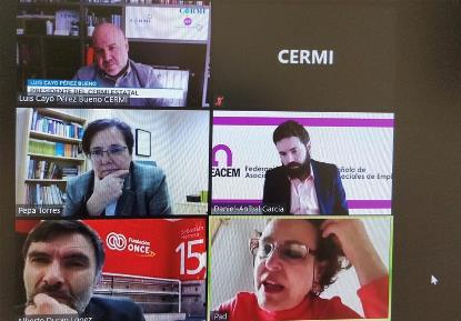 El CERMI pide a Valerio apoyo para materializar con rapidez las recomendación sobre discapacidad del nuevo Pacto de Toledo