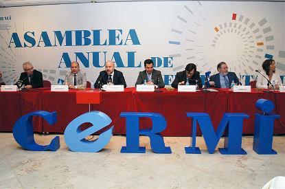 Otro momento de la Asamblea Ordinaria de Representantes del CERMI