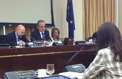 Luis Cayo Pérez Bueno (al fondo, a la izquierda), durante su comparecencia en la Comisión de Educación del Congreso de los Diputados
