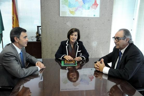 El CERMI Andalucía con la nueva Consejera de Política Social
