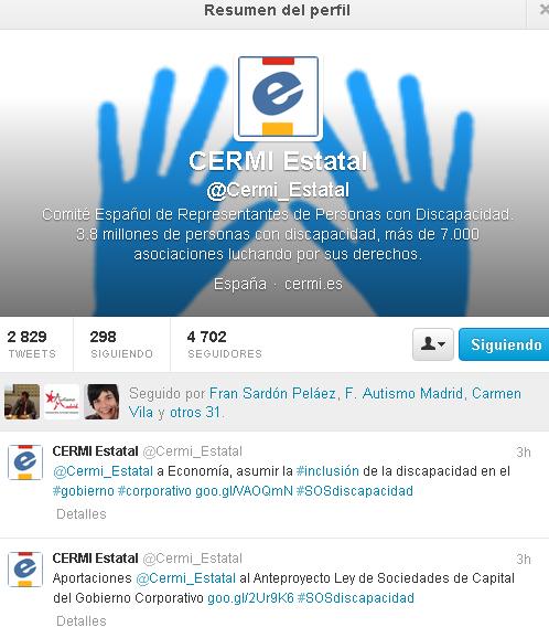 Imagen del Twitter del CERMI Estatal