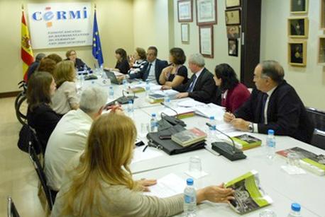 Reunión del Comité de Apoyo del CERMI para la Convención