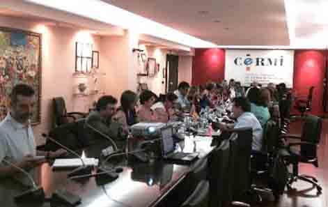II Jornada CERMIS Territorios 2014