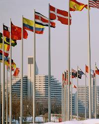 Banderas de la ONU